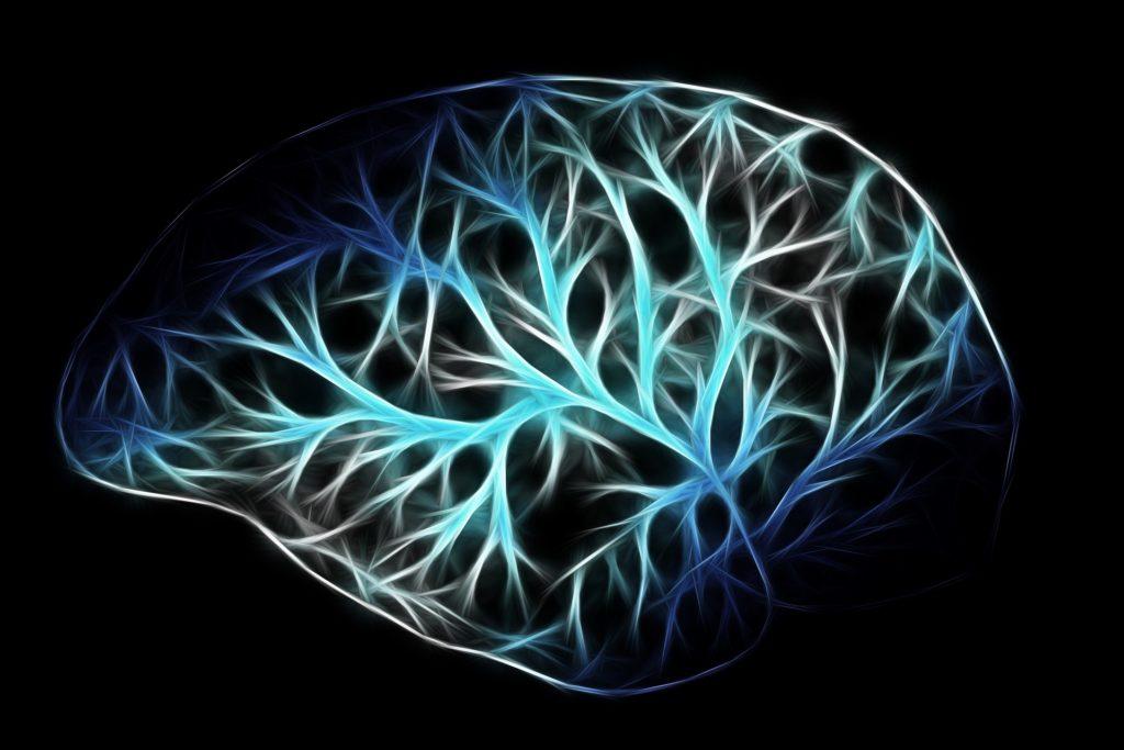 Représentation artistique du réseau neuronal du cerveau.